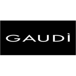 GAUDI